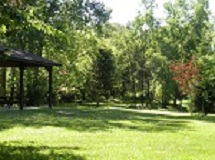 Ulfat Nature park